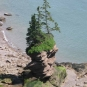 Colour photograph of a red rock pillar with three trees on top standing along the shore